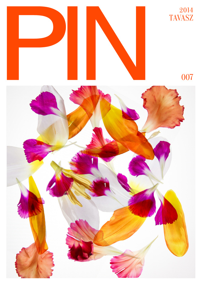 pin-magazin-1